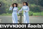 E1VFVN3001 คืออะไร