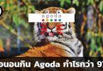 Agoda กำไร 97%
