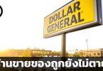 สรุปข้อมูลบริษัท Dollar General