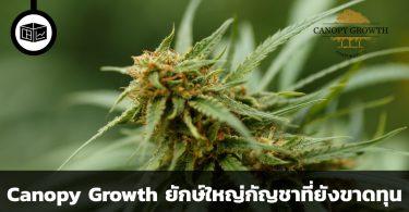 Canopy Growth หุ้นกัญชายักษ์ใหญ่ที่ยังคงขาดทุน
